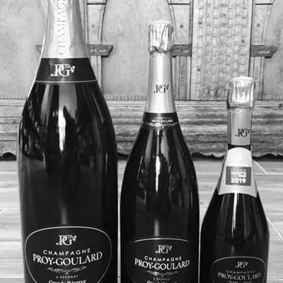 champagner tasting in duesseldorf